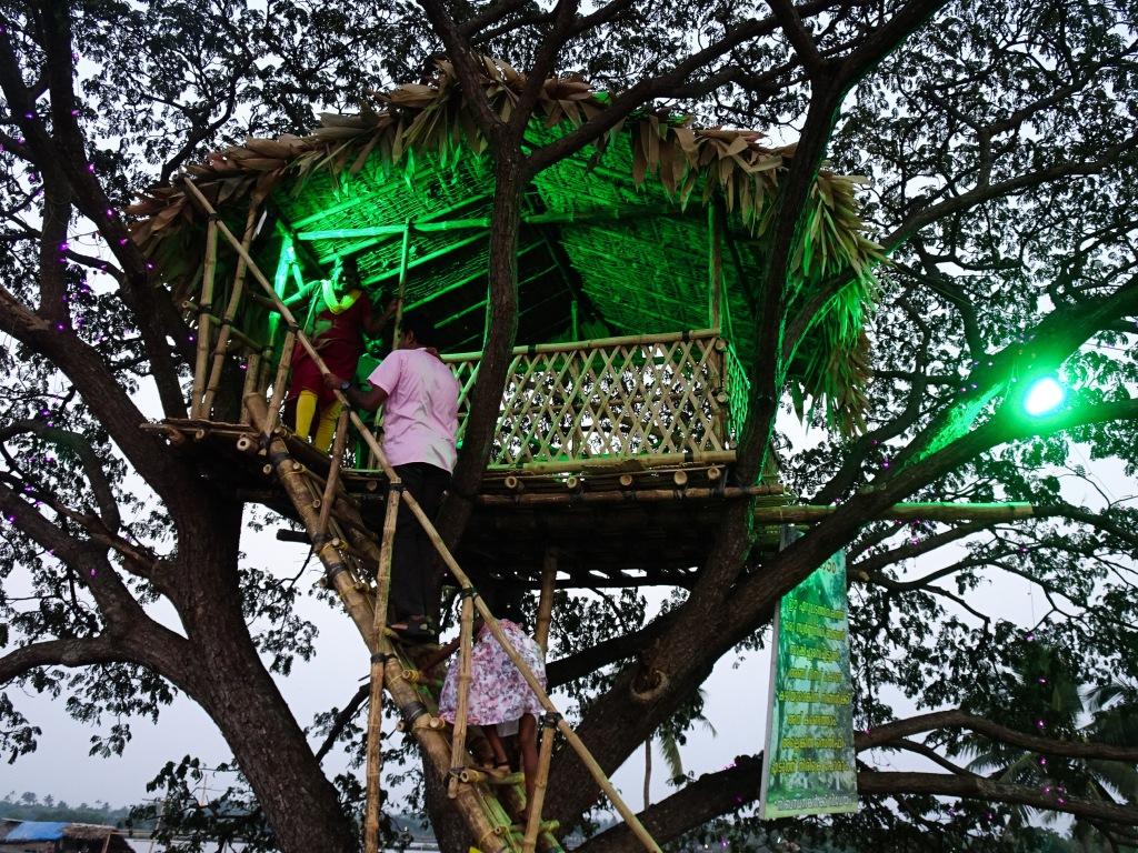 Tree house at Kadamakkudy