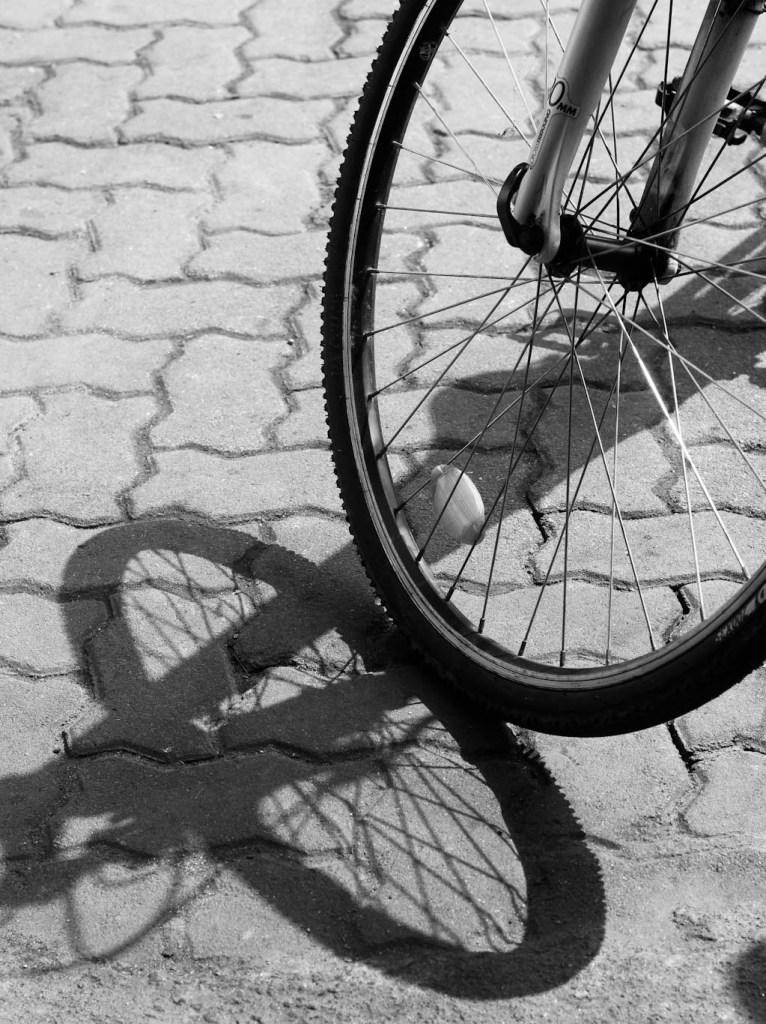 cycling at Kadamakudy Islands